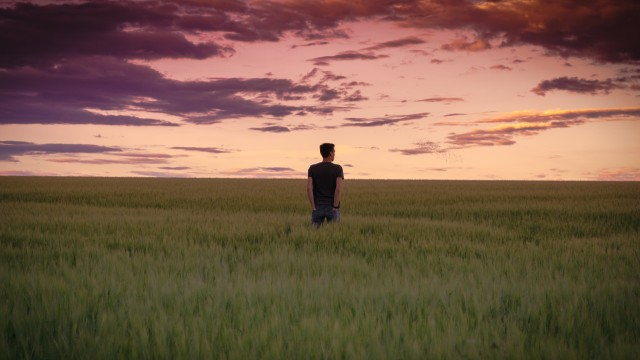 Guy standing in a field wheere everything looks the same up to the horizon. It's green and the sky has beautiful orange colors but he nonetheless looks a bit bored.