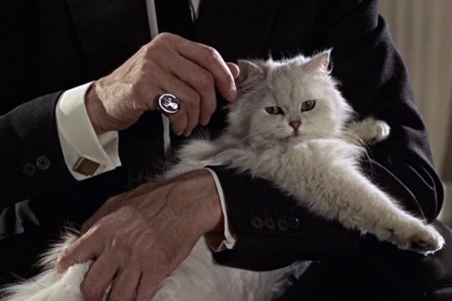 James Bond villain Blofeld patting his white cat.