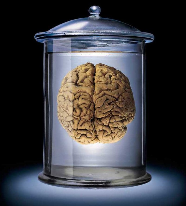 A brain in a jar - a bit morbid but also scientifically looking. It's probably just a metaphor.