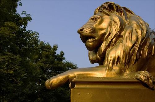 pride-lion.jpg