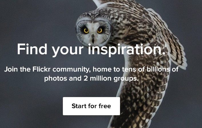 Proxima Nova webfont example on the Flickr.com homepage